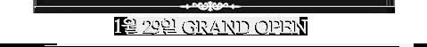 1월 29일 GRAND OPEN