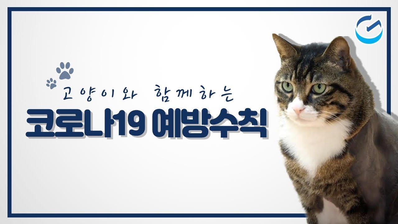 고양이와 함께하는 코로나 19 예방 캠페인